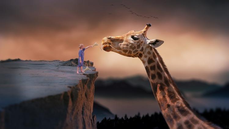 niño jirafa